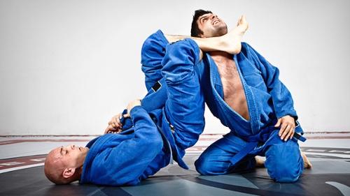 Бразильское джиу-джитсу, боевые искусства, приемы самообороны