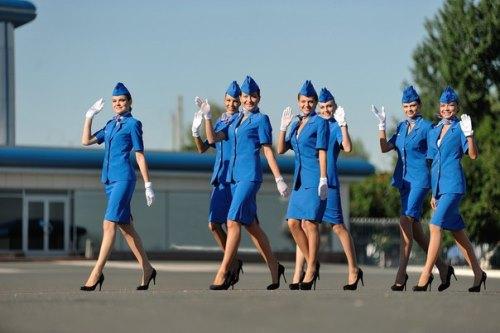 Почему выбирают работу стюардессы